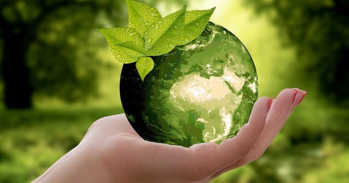 Potes sustentáveis preservam o meio ambiente ao reduzir consumo de plástico