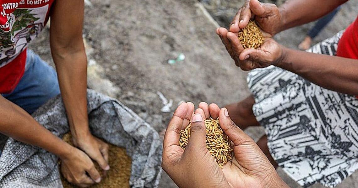 Por que o Brasil passa fome? Eventos discutem reforma agrária e soberania alimentar