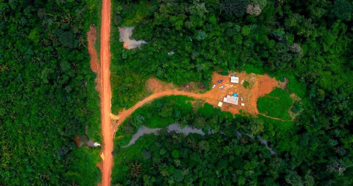 Corte de verba reforça desmonte da fiscalização ambiental no Brasil