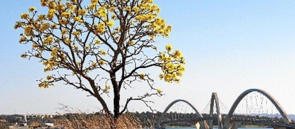 Pontos turísticos de Brasília serão expostos em feiras internacionais
