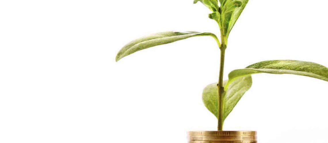 Preocupação com causas ambientais e sociais nas empresas aumenta o volume de 'emissões verdes'