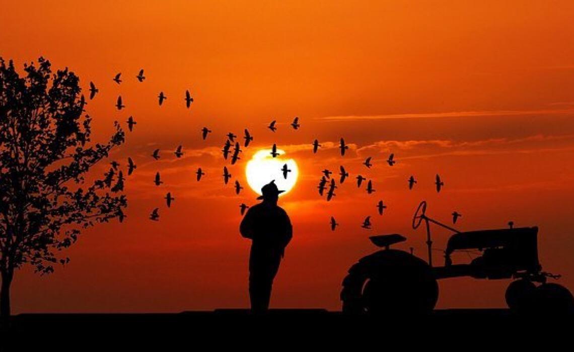 'Tratoraço': Conheça os mandachuvas da Codevasf, estatal do Centrão