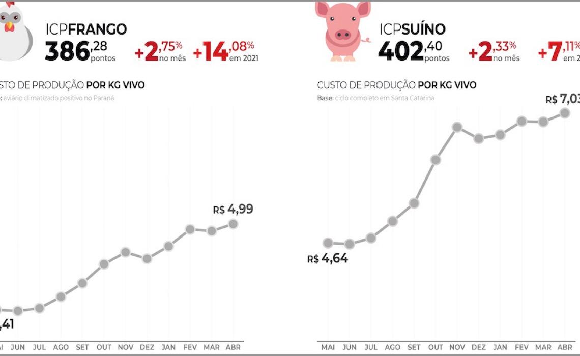 Custo de produção de suínos passa dos R$ 7 por quilo vivo