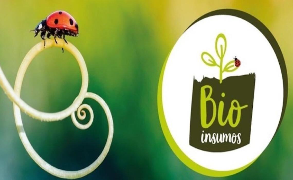 Intensificação sustentável e uso de bioinsumos são temas de evento on-line