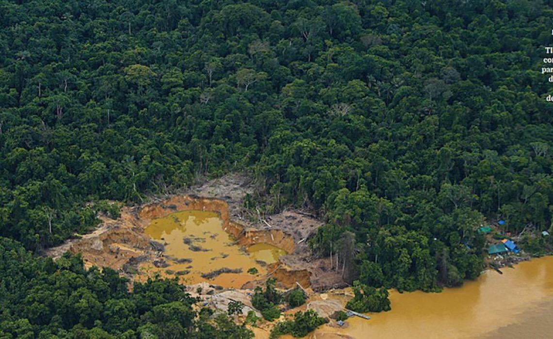 Desmatamento de áreas protegidas cresce 20% na Amazônia; veja as áreas mais afetadas