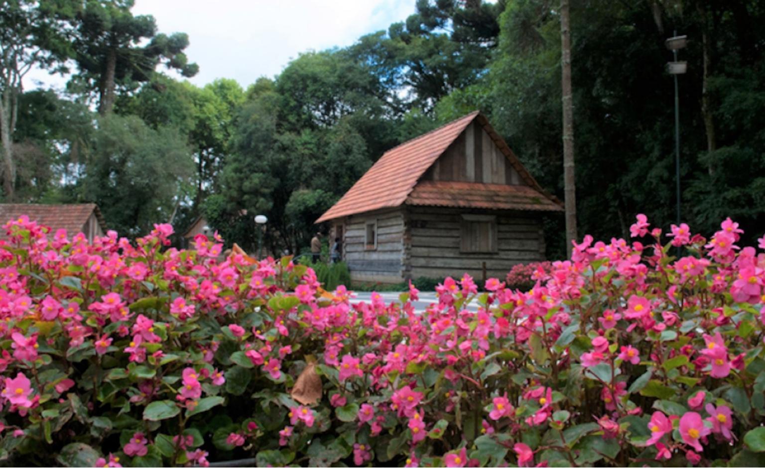 Inscrições abertas para cursos gratuitos de atrativos naturais e culturais a guias de turismo da Região Sul