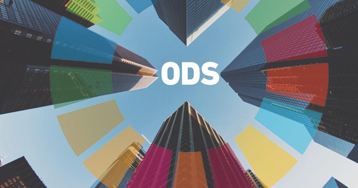 ONU Mulheres seleciona, até 29/6, Consultoria para apoio técnico na transversalização de gênero e raça no escopo do Projeto Fundo ODS