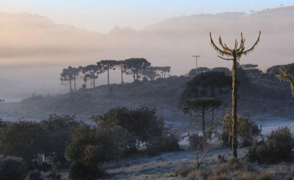 Massa de ar polar provoca frio intenso durante a semana no país
