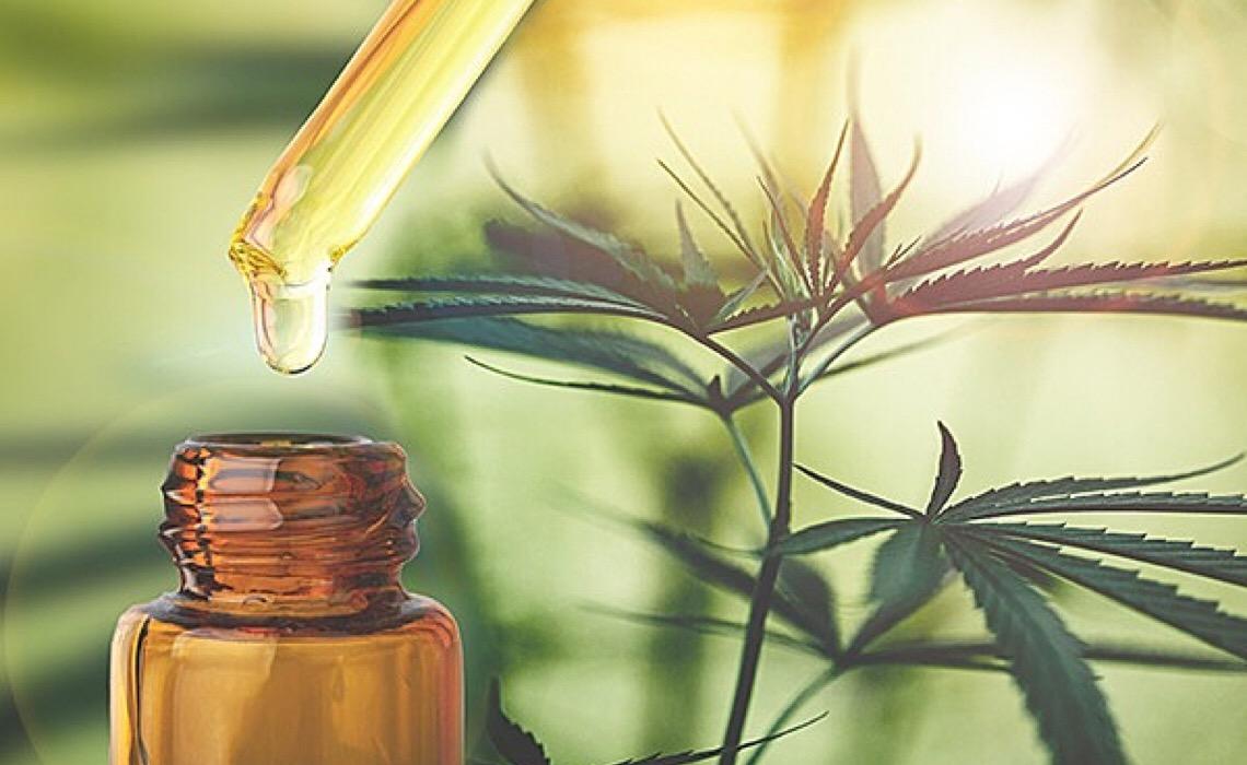 Legislação de uso medicinal da maconha avança no Paraná
