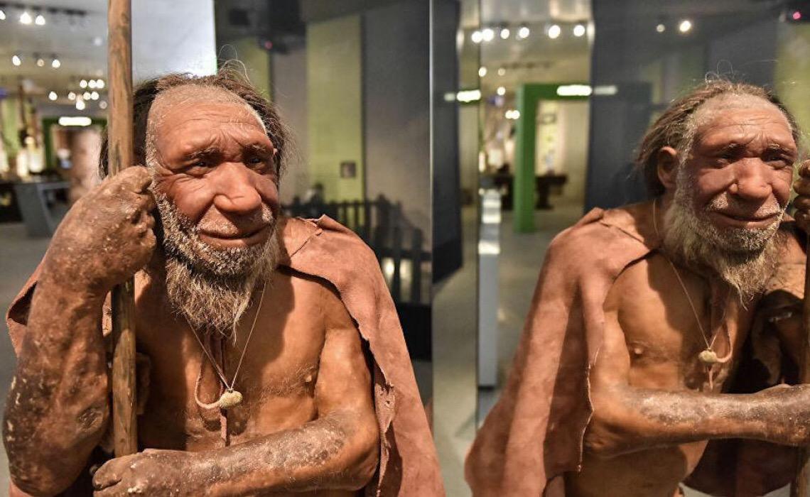Restos mortais de 140 mil anos revelam 'nova espécie humana' em Israel