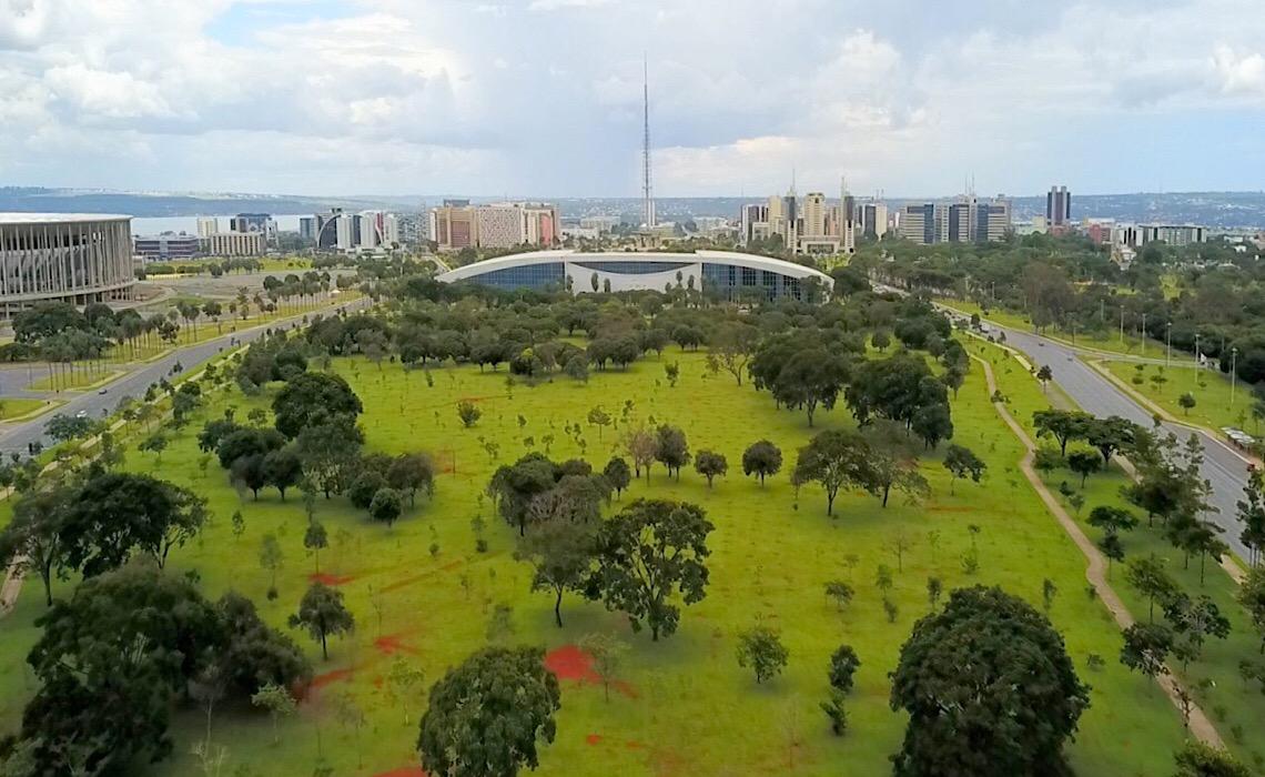 Arborização de Brasília contribui para minimizar efeitos da seca