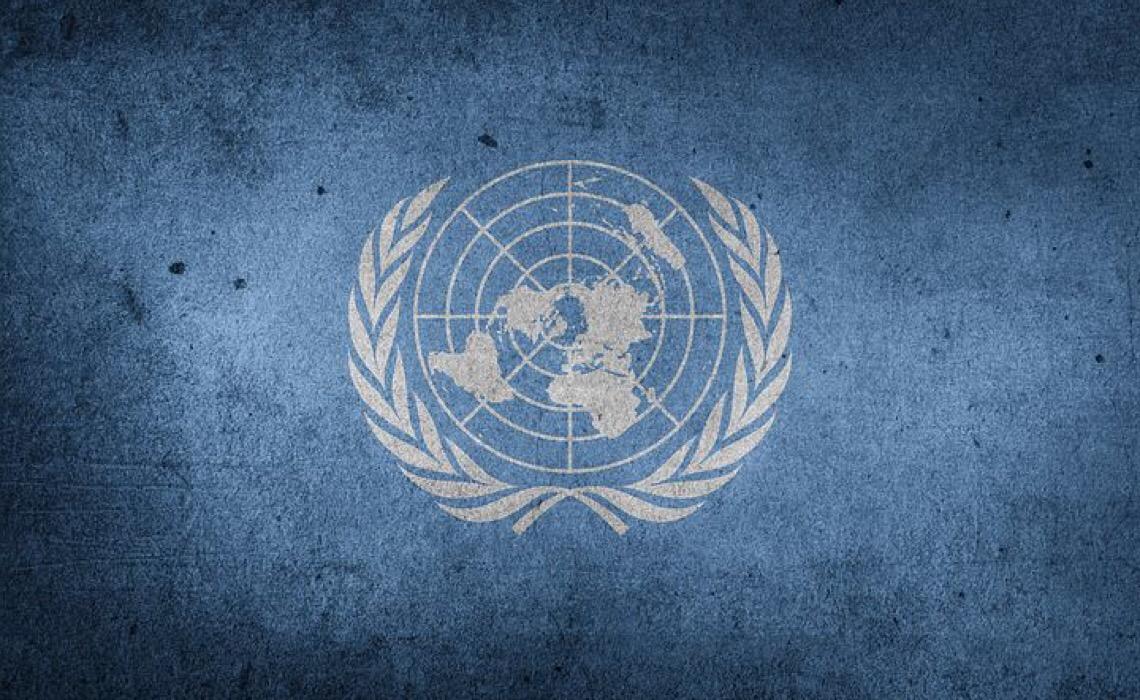 Sistema das Nações Unidas apresenta oportunidades de trabalho da semana de 26 de julho de 2021
