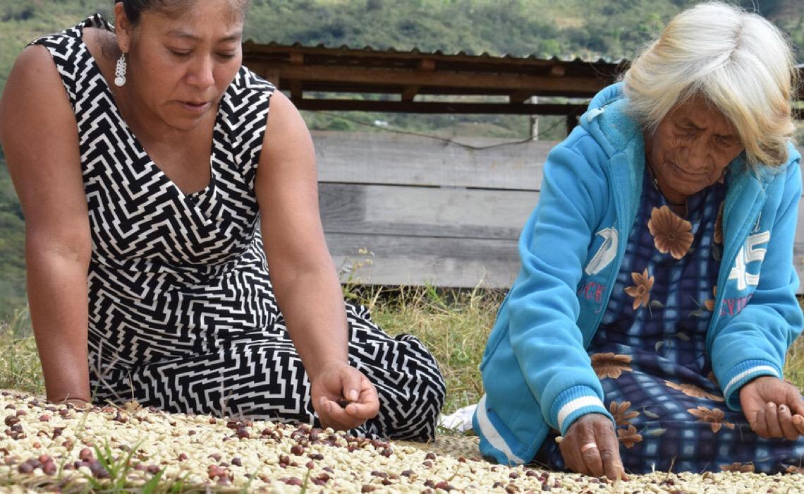 Nações Unidas ressaltam oportunidades para reverter situação de fome no mundo
