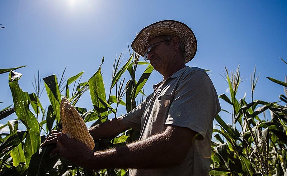Plano Safra, agricultura familiar e preço dos alimentos: os desafios do momento