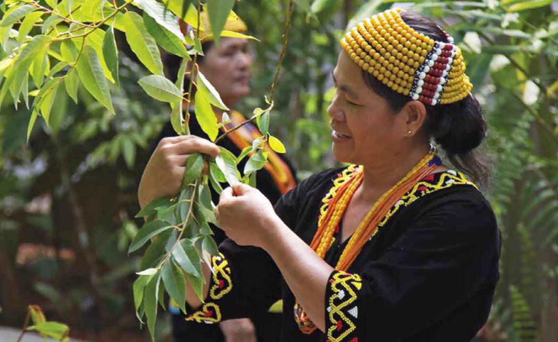 ONU quer novo contrato social para garantir direitos e dignidade dos indígenas