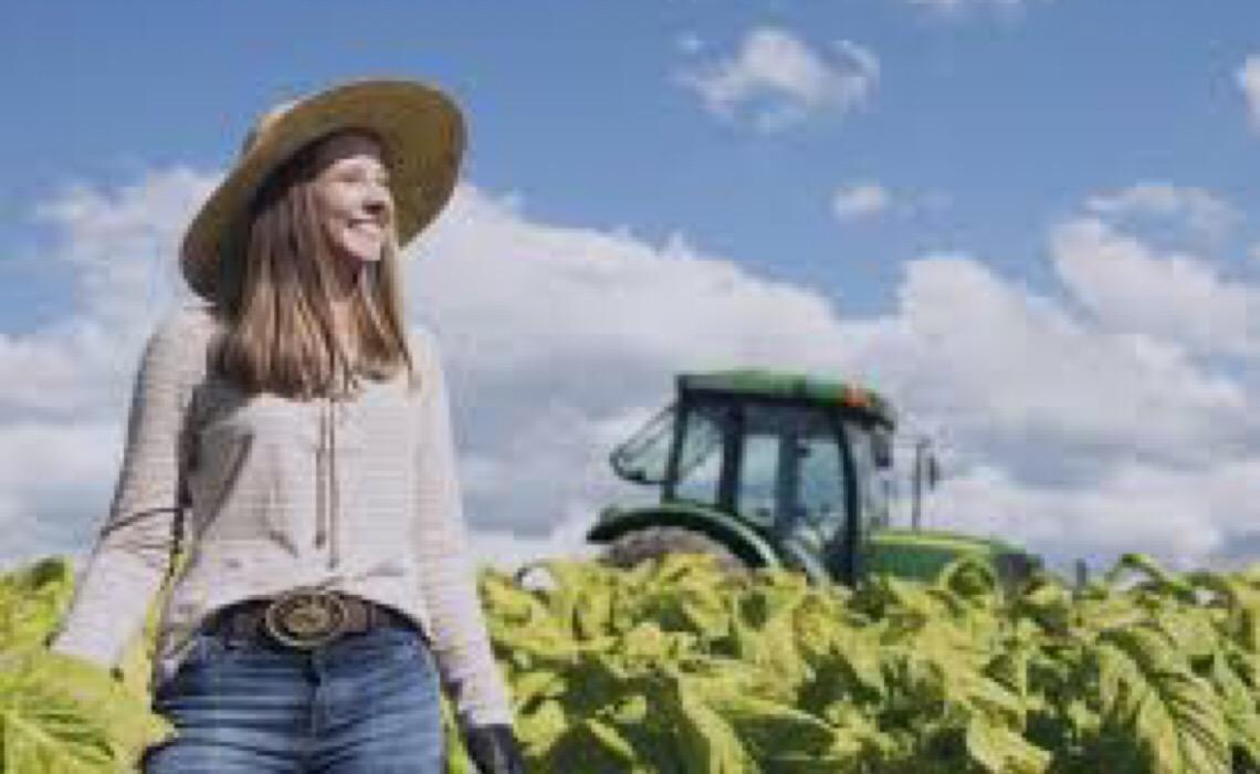 Com inovação e sustentabilidade, protagonismo feminino ganha destaque no Dia da Avicultura
