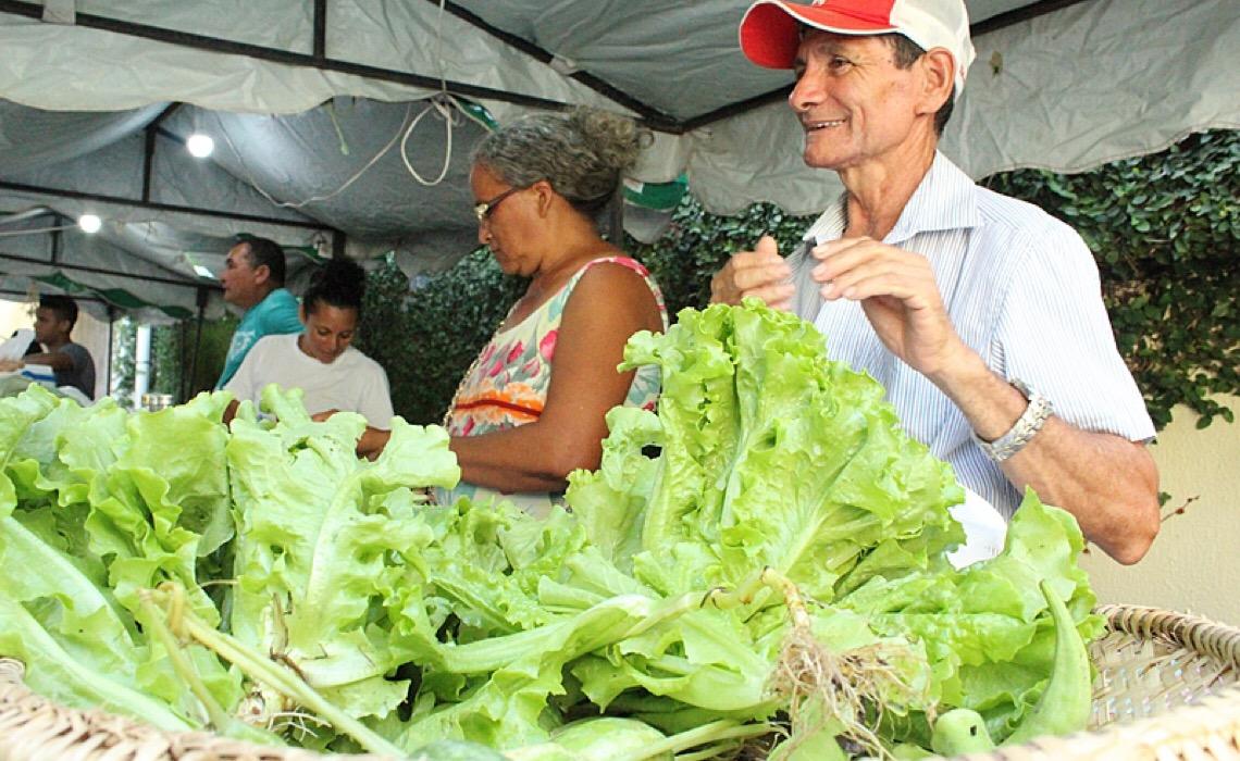 Você já conhece o Guia Alimentar para a População Brasileira?