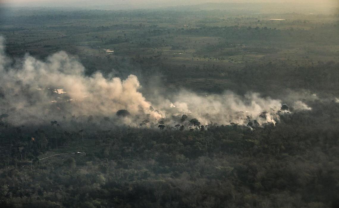 Área derrubada da Amazônia em terras indígenas e protegidas é 3 vezes maior que a cidade de SP