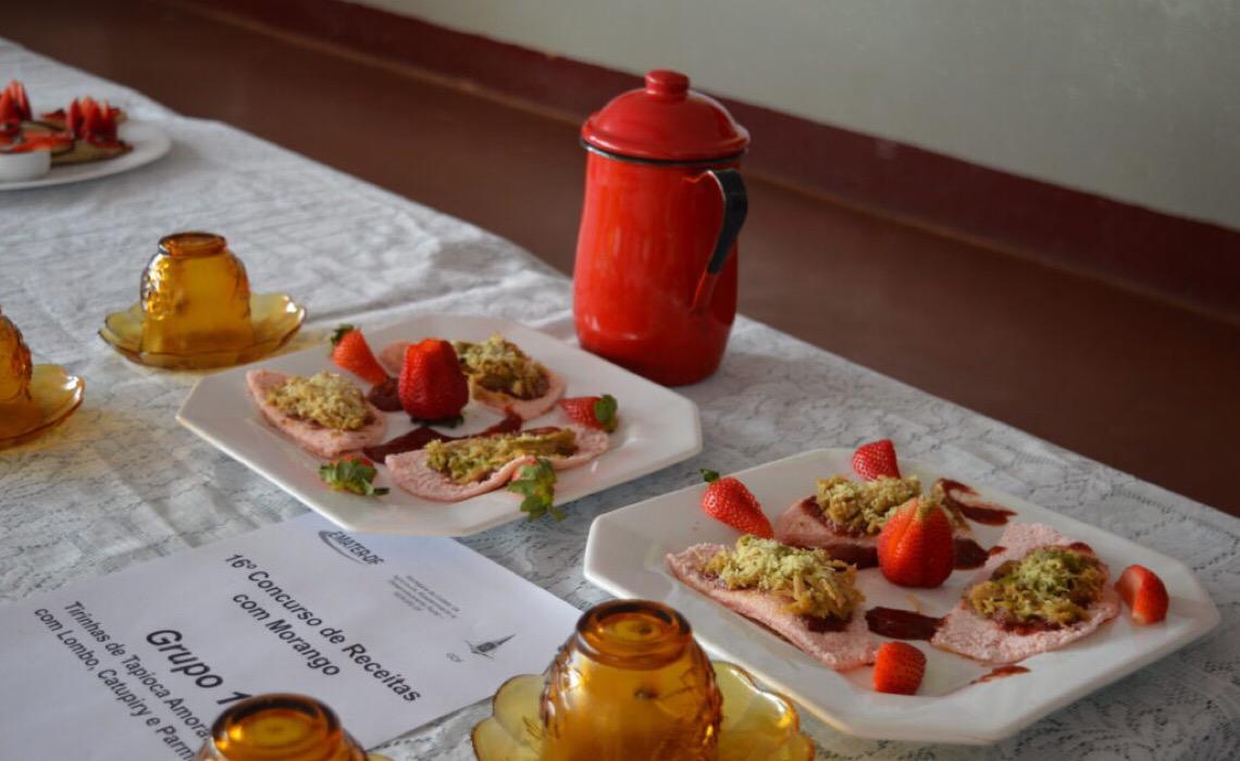 Tapioca, rocambole e bolo de morango venceram o Concurso de Receitas