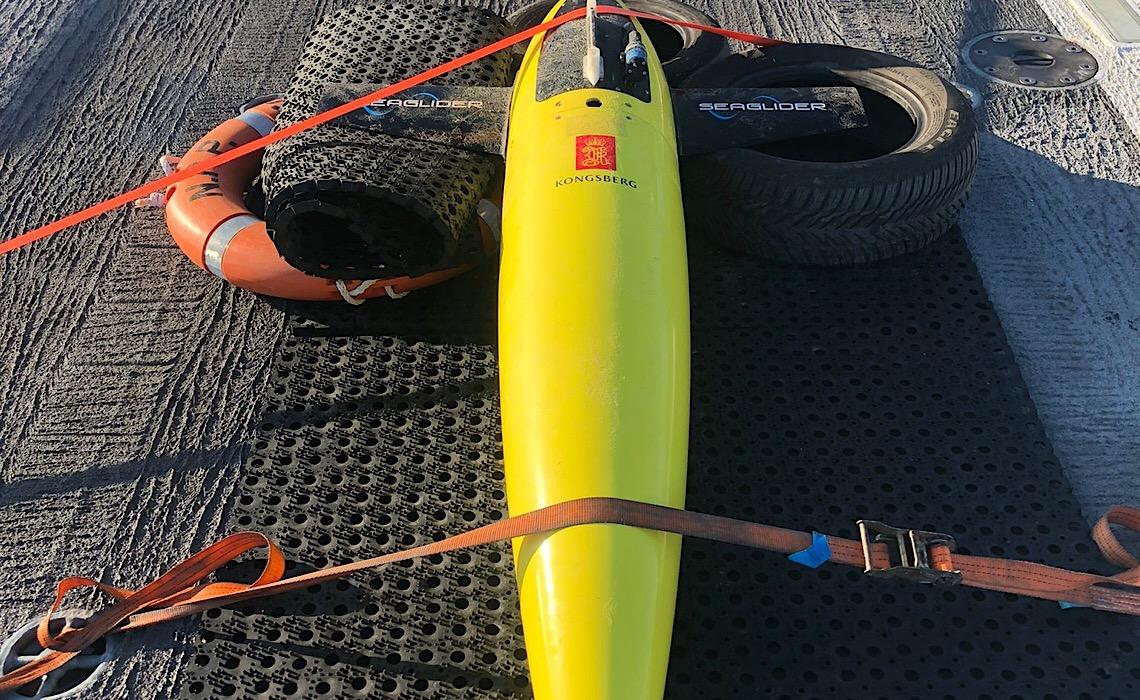 Marinha de Portugal recupera drone subaquático à deriva em Aveiro