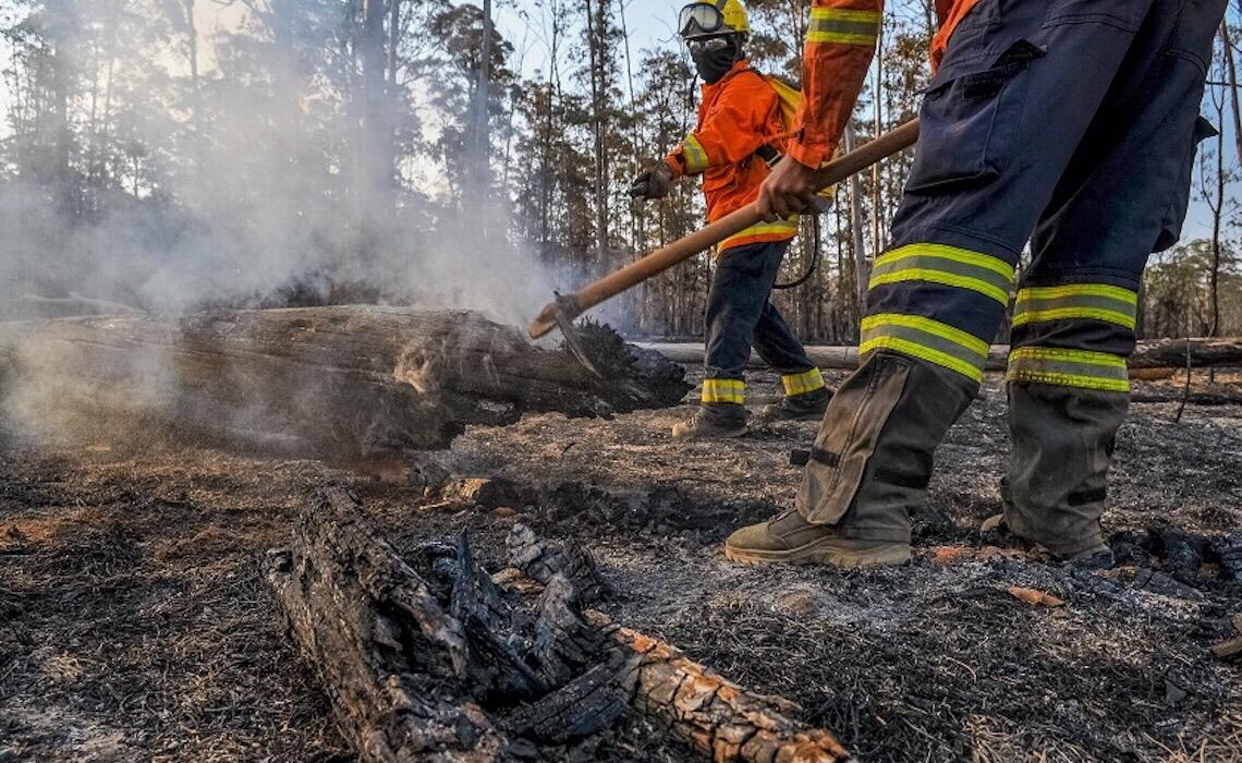 Estratégia unificada para combater incêndios no DF