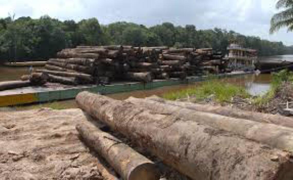 Invasão de guerrilheiros e atenção de 'países poderosos' na Amazônia ameaçam soberania do Brasil?