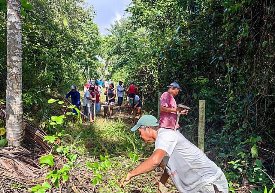 Indígenas Pataxó acusam latifundiário por tentativa de atropelamento no sul da Bahia