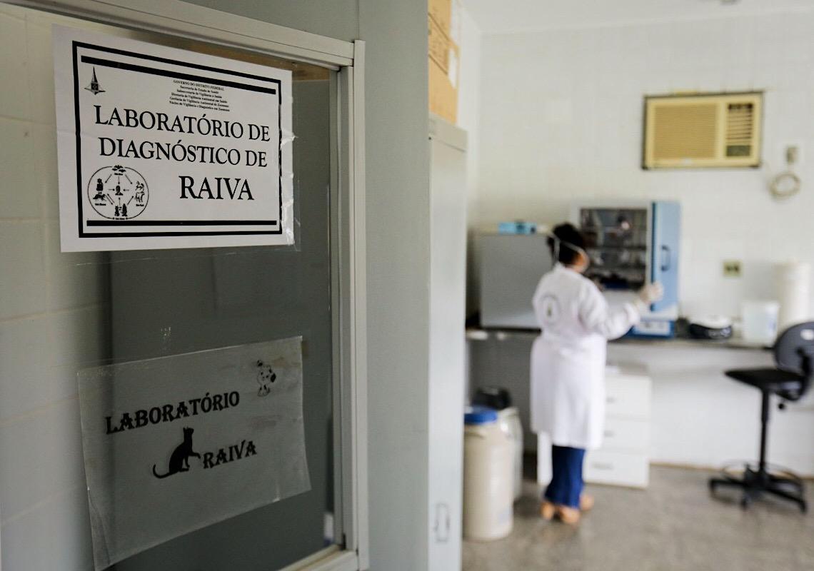 Laboratório do DF é referência nacional e auxilia no controle da raiva
