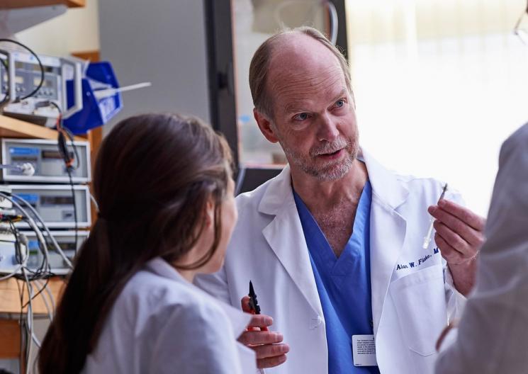 Útero artificial pode ser usado para salvar prematuros, sugere estudo