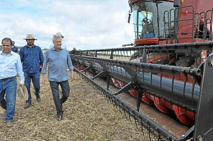 Otimismo com a safra de grãos no Distrito Federal