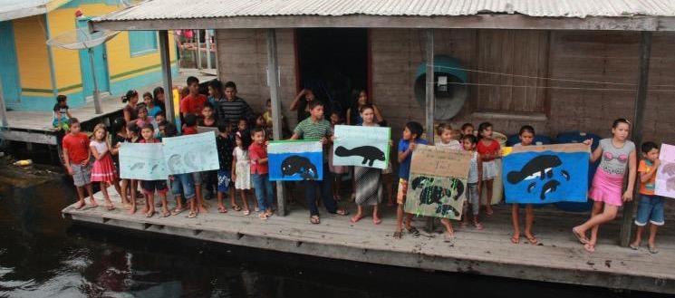 Inpa fará na Páscoa a maior soltura de peixes-bois nos rios da Amazônia