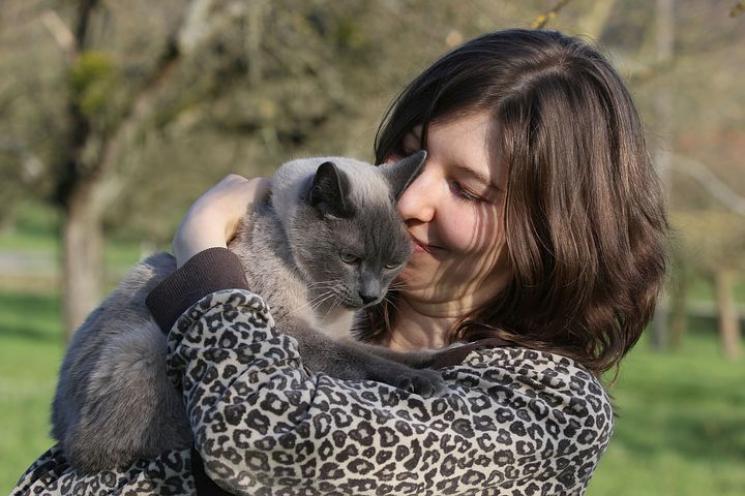O que os gatos gostam? 10 dicas para agradar o seu bichano!