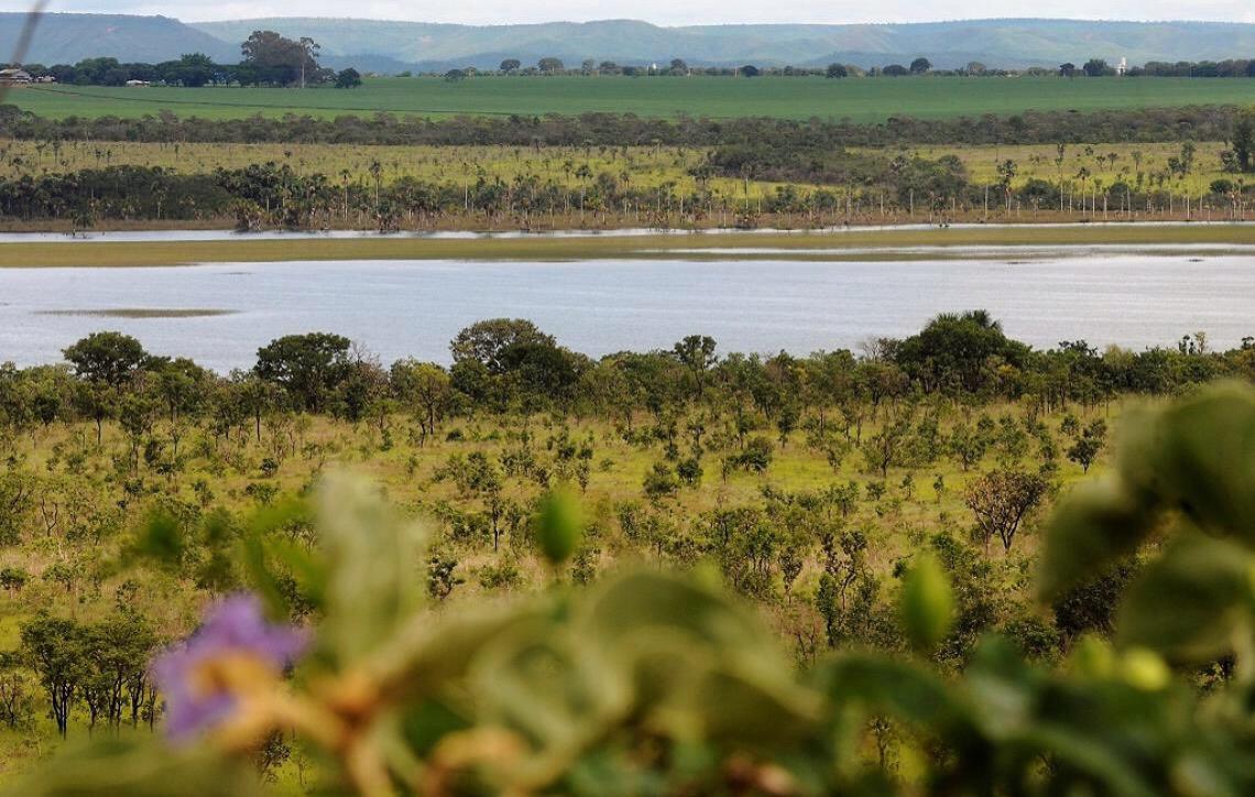 Adasa cria coordenação para fortalecer os Comitês de Bacias Hidrográficas do DF
