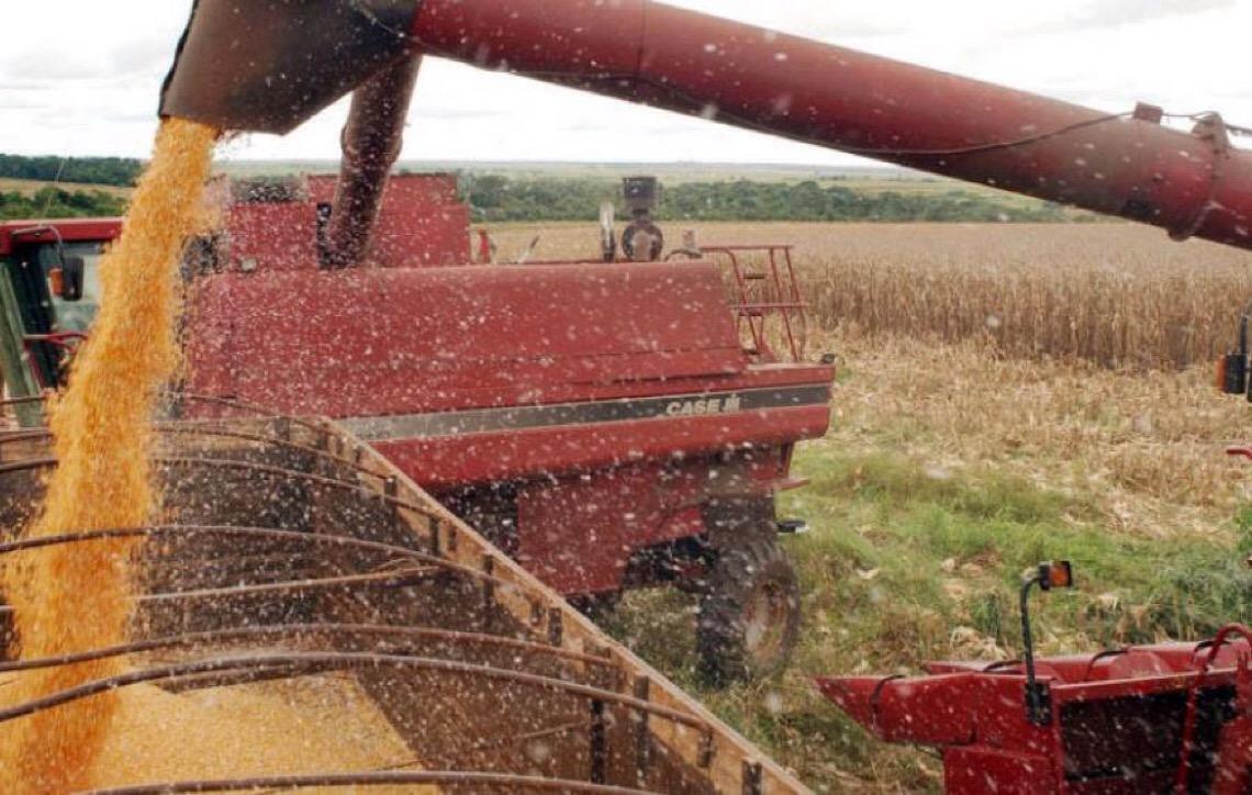 Safra de grãos cresce 4,5% e deve fechar em 238,3 milhões de toneladas