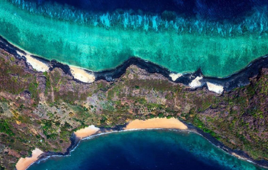 "Recifes de coral no mundo enfrentam ""futuro extremamente sombrio"""