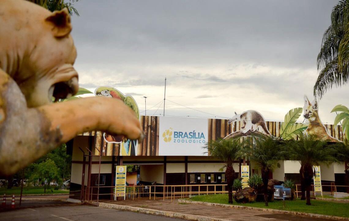 Zoológico de Brasília comemora 61 anos