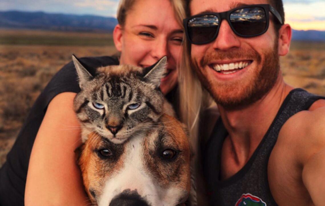Conheça o gato e o cachorro resgatados que se tornaram companheiros inseparáveis