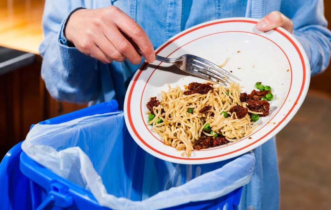 Dieta vegana ajuda a salvar o planeta, o que você acha?
