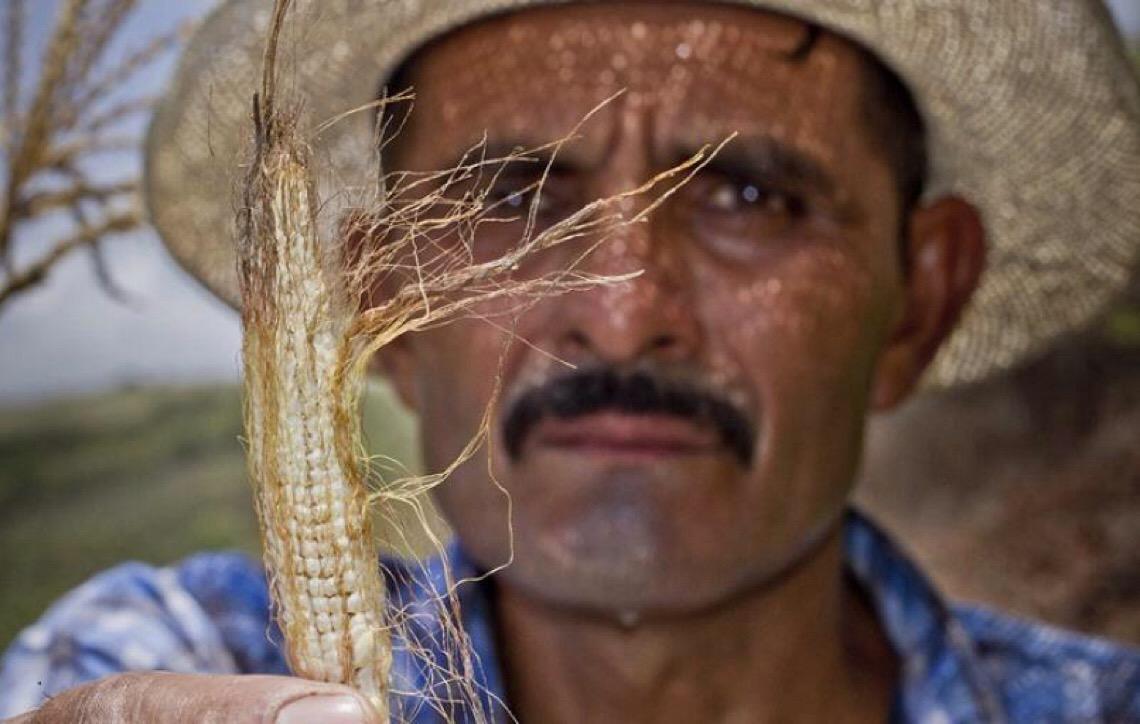 Mudança Climática define a difícil escolha entre ficar ou partir na América Central