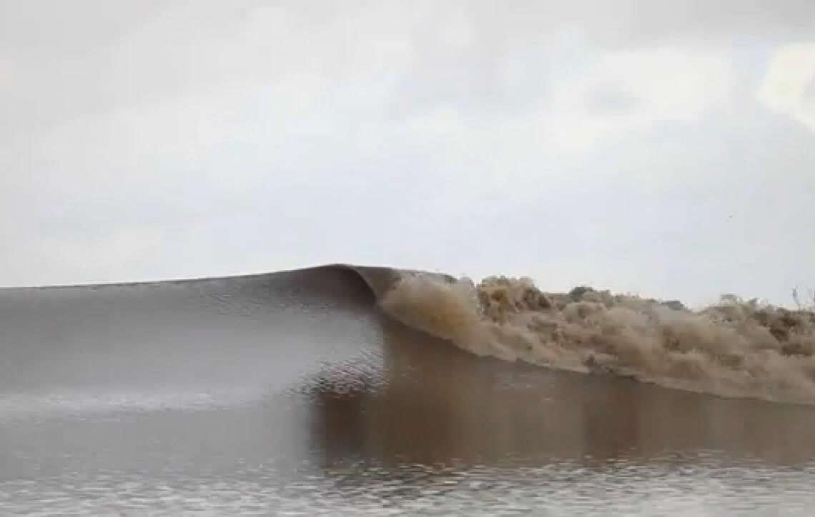 Pororoca: fenômeno natural que não existe mais, uma triste notícia