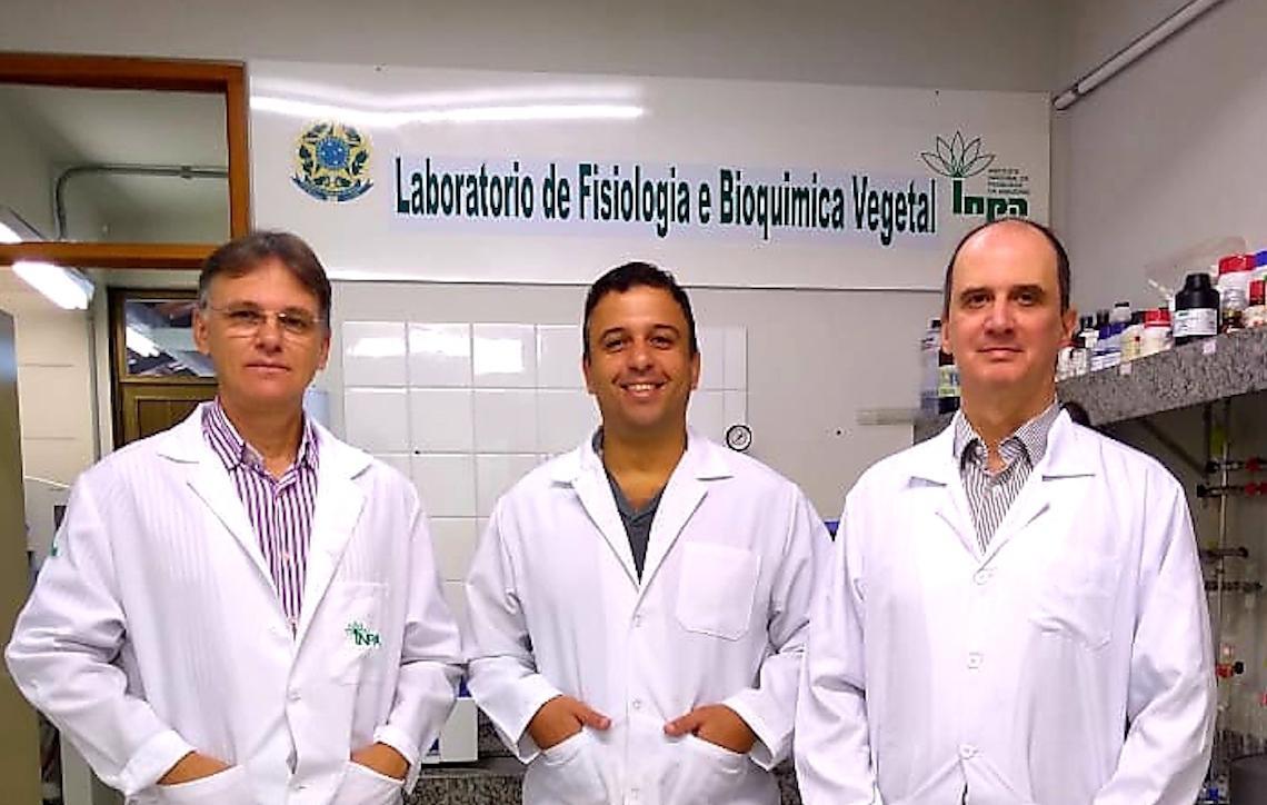 Estudo procura entender efeito integrado de fatores ambientais na emissão de compostos orgânicos voláteis liberados pela floresta amazônica
