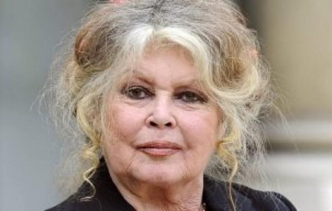 Brigitte Bardot disputará vaga no Parlamento Europeu