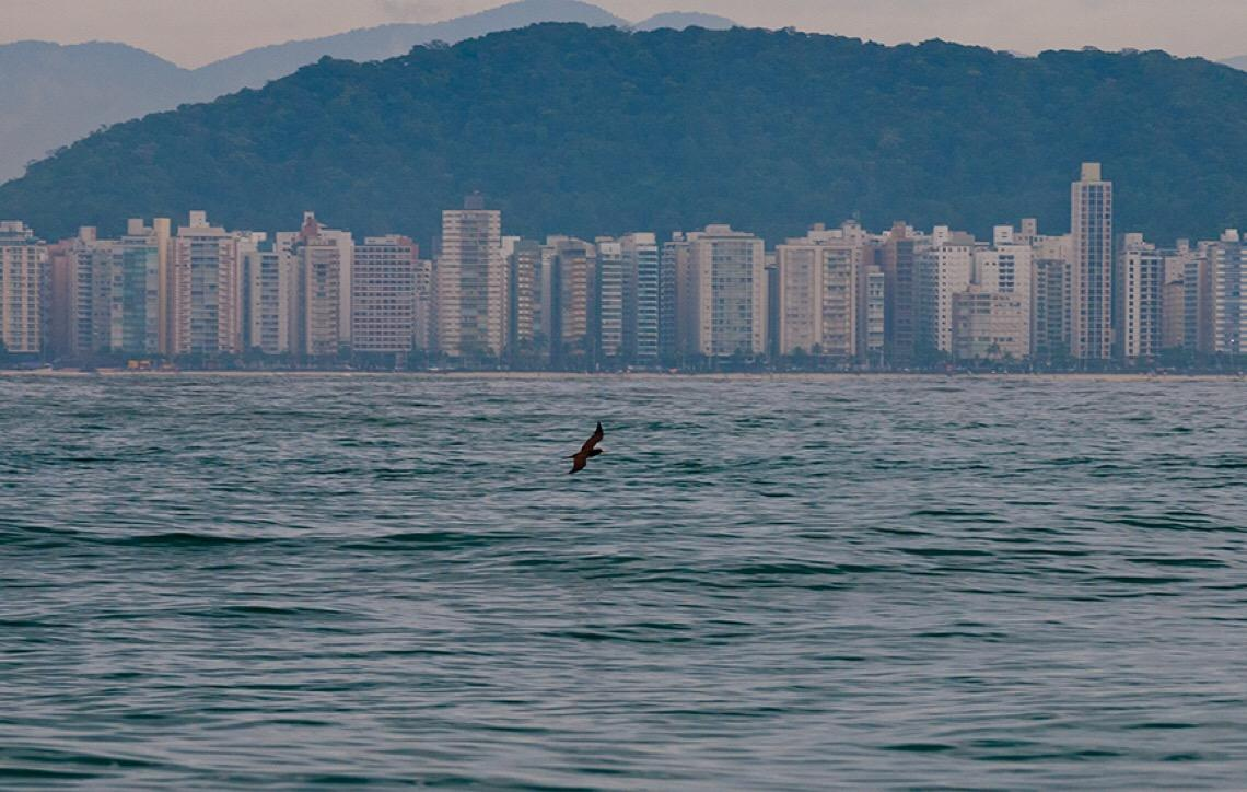 Guarujá: de Pérola do Atlântico, para uma cidade onde impera o mau gosto e a violência
