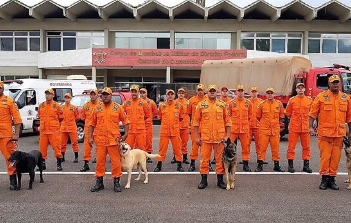 Cães dos bombeiros do DF voltam de Brumadinho e recebem homenagens