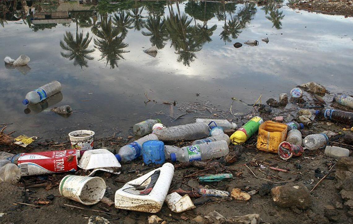 Presidente Jair Bolsonaro anuncia campanha de combate à poluição no mar
