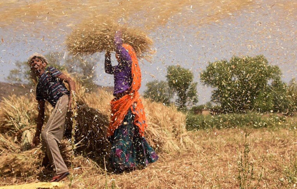 Na Índia, mulheres do campo ganham 25% menos que homens