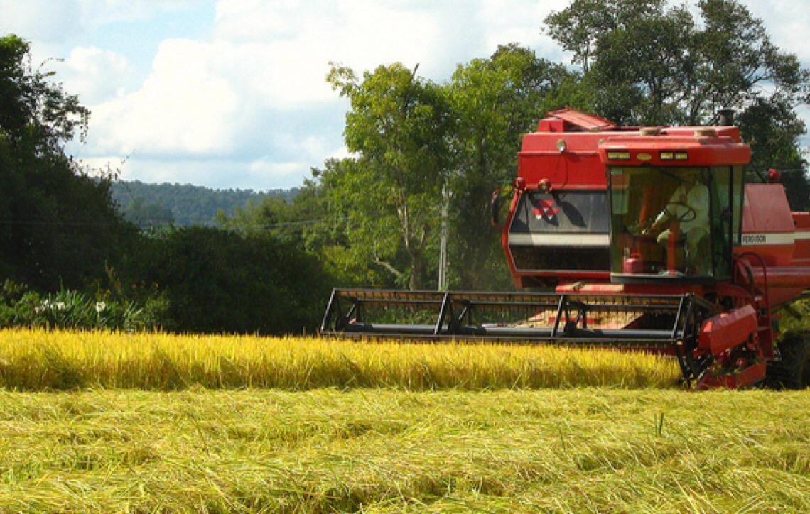 Especialistas. O que falta no Brasil para que o agronegócio alavanque de fato a economia?