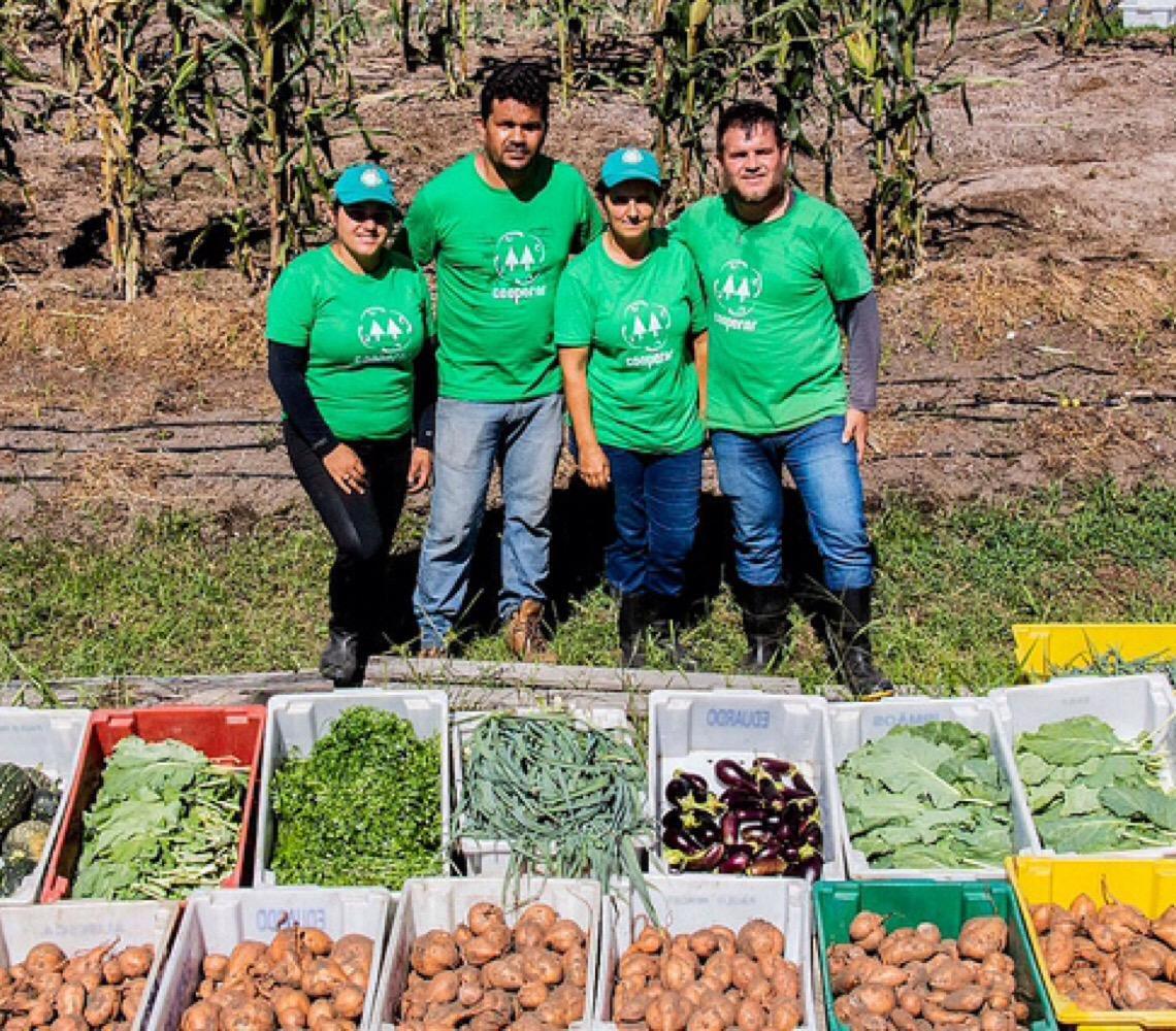 Conheça a iniciativa que leva alimentos sem veneno a famílias em Maricá (RJ)