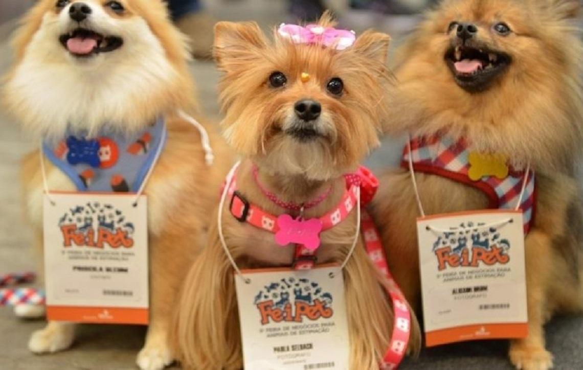 FEIPET 2019: Feira de negócios para animais de estimação