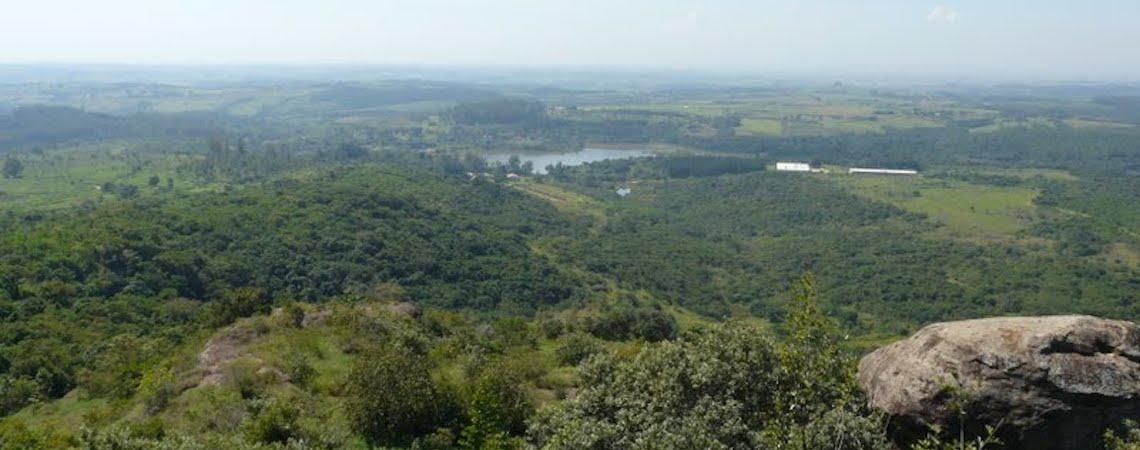 Cientistas brasileiros sugerem redefinição dos limites da Amazônia
